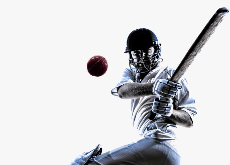 Cricket betting apps in India overview (2021)