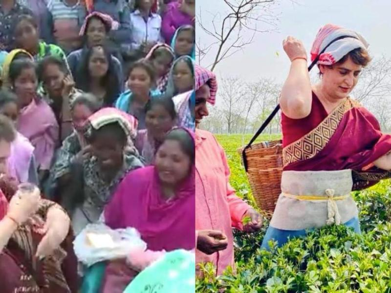 Priyanka Gandhi tea tribe