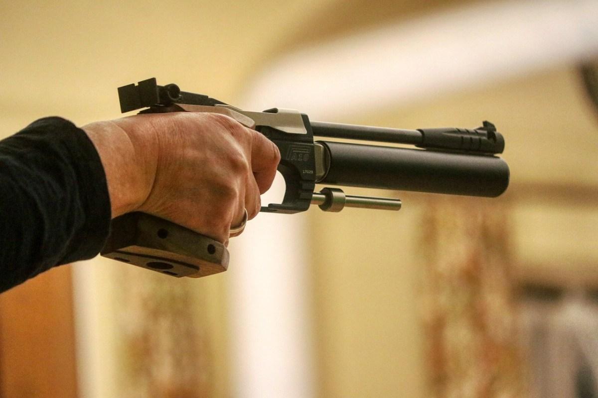 Arunachal wildlife airgun