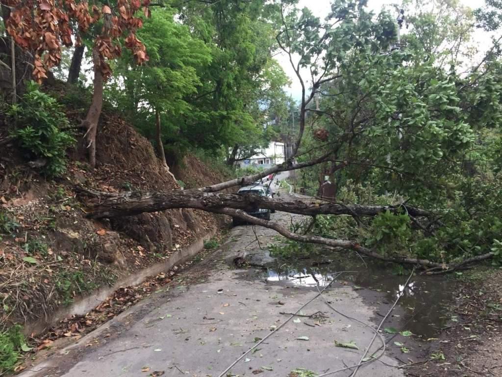 Meghalaya thunderstorm leaves a trail of destruction