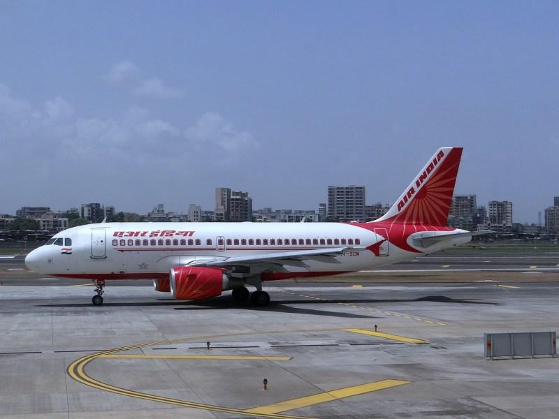 Air India flight returns after crew sees bat's carcass in business class