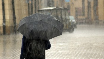 Monsoon activity over Northeast India not over; expect heavy rains: IMD