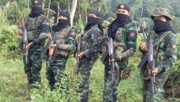 Assam militant outfit DNLA declares unilateral ceasefire