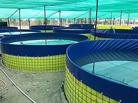 Aqua Blue Global Aquaculture Solutions