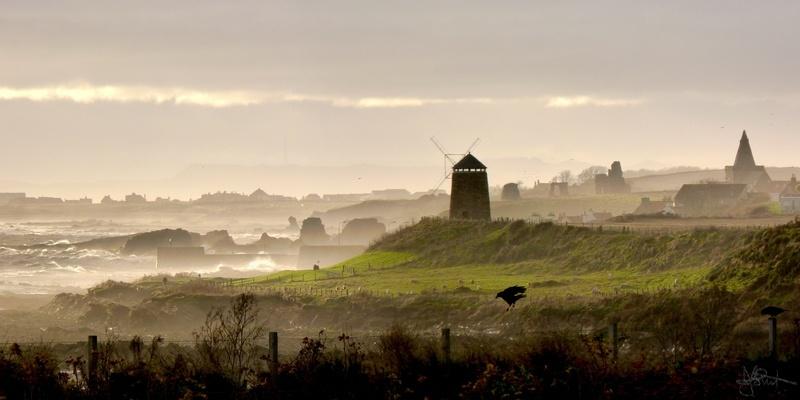 Three landmarks and a crow
