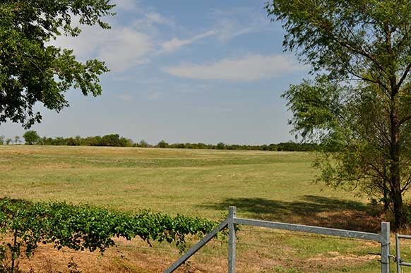 163-lamar-county-near-paris-texas-6