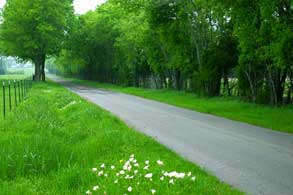 42-8-paris-texas-meadow-pond-road-small