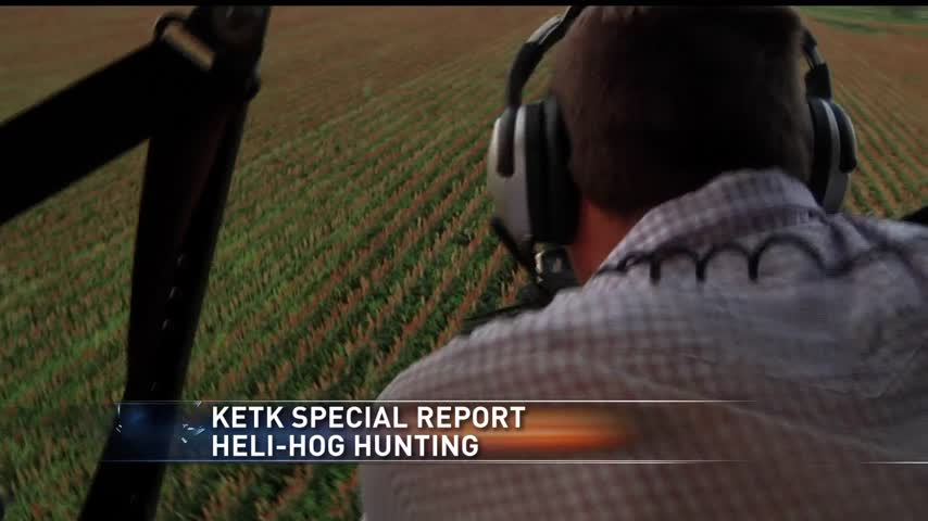 HELI HOG HUNTING_88305253-159532