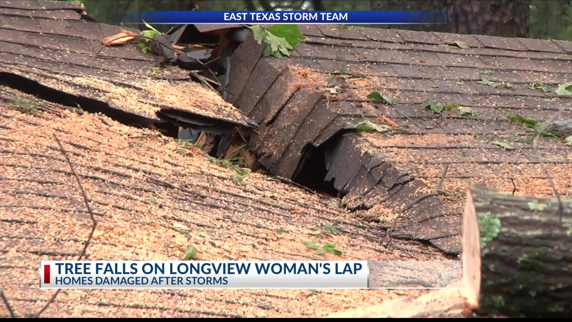 Tree_falls_on_Longview_woman_s_lap_7_20190509031340