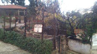 Grobnica proroka