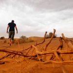 o pustinji
