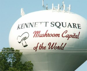 Kennett Square and Immigration Policy