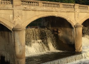 "Hamilton Dam coming down as  ""rewilding"" of Flint River flows forward"