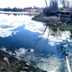 Seasonal deluges cause Thread Lake Dam breach, Hamilton Dam delays