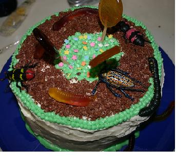 Bug Cake Ideas