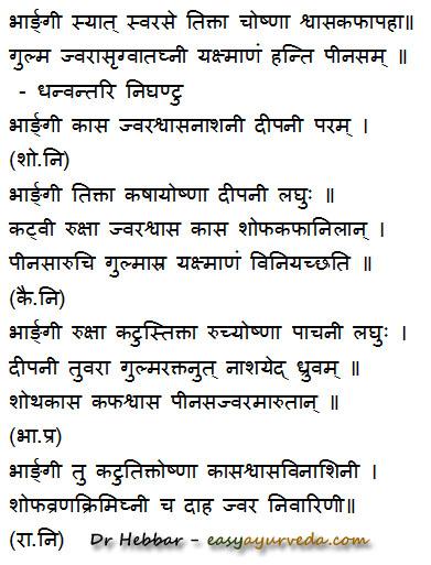 Bharangi - Clerodendrum serratum