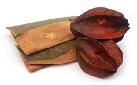 Arjuna bark and dried fruit