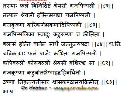 Gajapippali uses