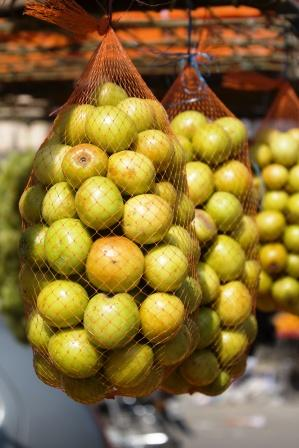India Jujube fruits
