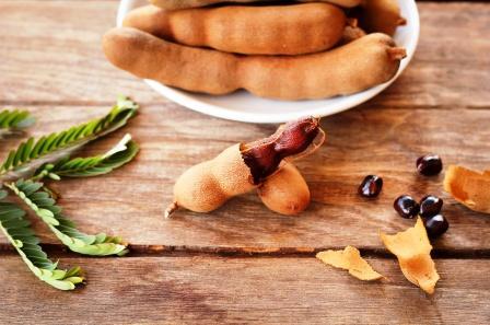 Tamarindus indica leaves fruit pod seeds