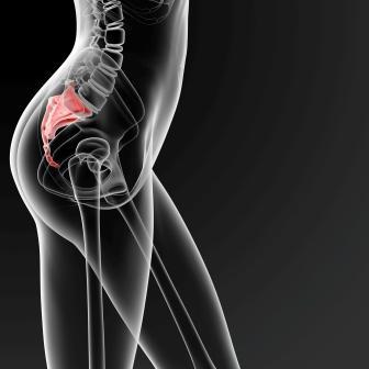 female sacrum bone