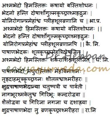 Pashanabedha - Berginia ligulata