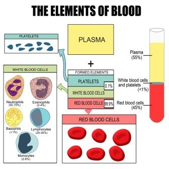 the elements of blood
