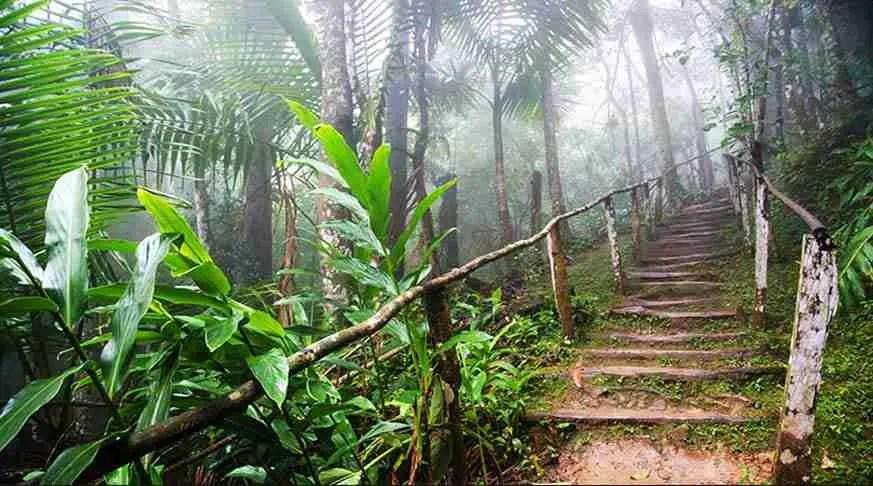 Trekking Turquino Peak, Cuba, the history and nature togheter