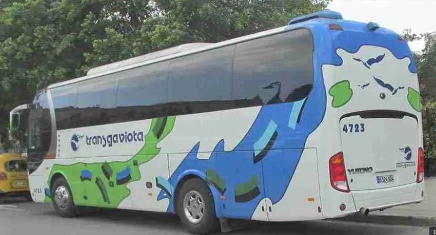 pullman per gruppi cuba. bus for groups. omnibus para grupos
