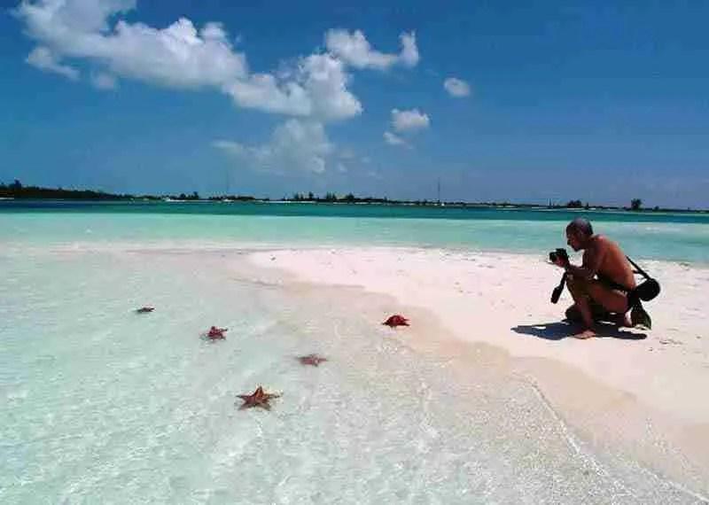 trip to cayo largo. the sea stars.