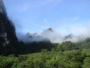 Khao Lak Ausflug zum Khao Sok National Park