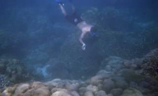 Snorkeling Khao Lak Tours to Surin Islands (4)
