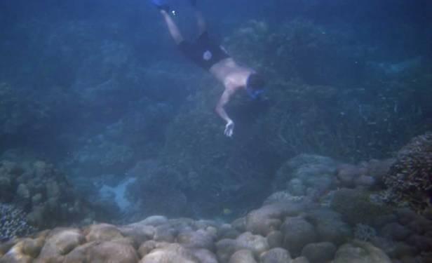 Snorkeling Khao Lak Tours to Surin Islands