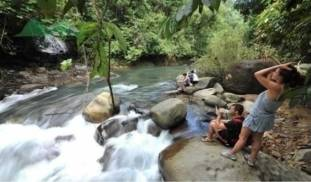 Khao Sok Discovery Tour - Jungle Trekking