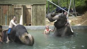 Elephant Bathing & Trekking Phuket Island