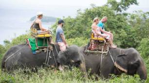 Elephant Trekking Phuket - Mountain Top