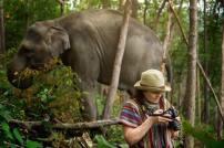 Elephant Sanctuary Phuket - Photographer