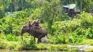 Koh Phangan Elefantenreiten gebucht mit Easy Day Samui