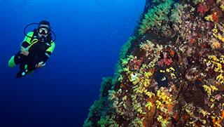 Things To Do In Khao Lak - Scuba Diving Khaolak