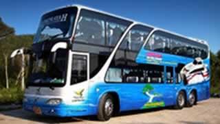 Phuket to Koh Samui Transfers - Bus 50 seats