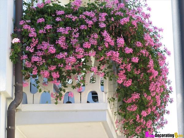 Easy DIY flower planting
