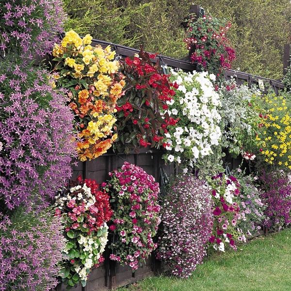Easy flower planting plans
