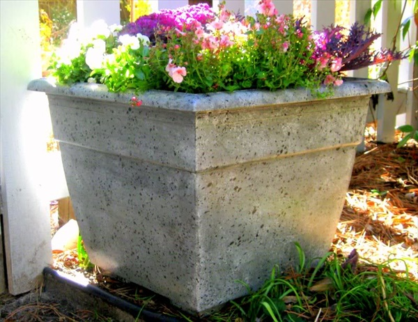 Awesome flower planting ideas