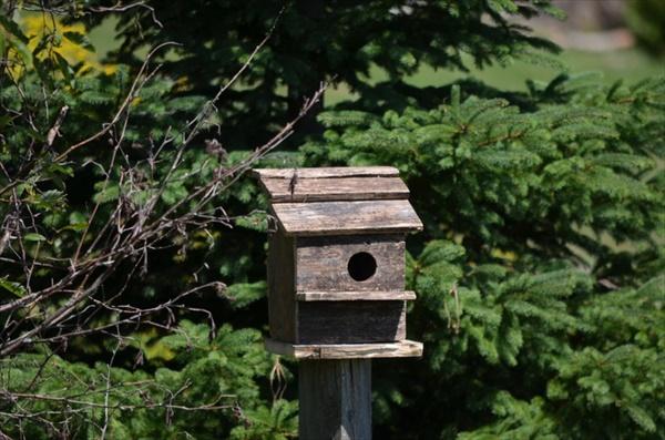 DIY old wood birdhouse