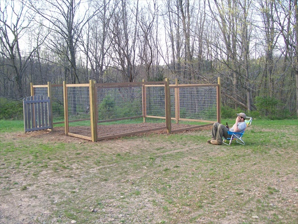 DIY privacy fence ideas