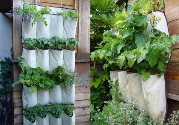 DIY Flower pots ideas
