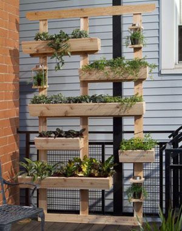 DIY outdoor gardening plants