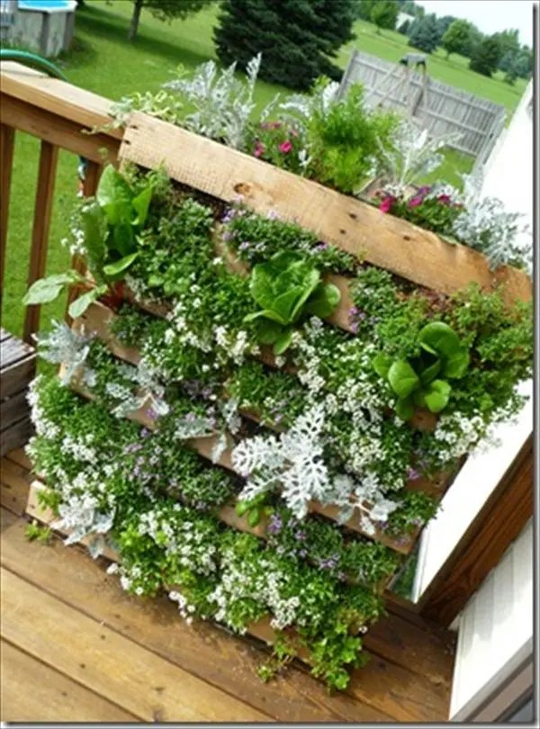 DIY Innovative pallet planter