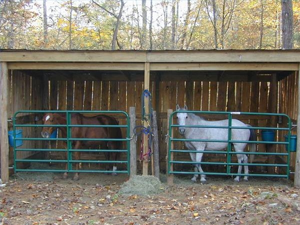 How to make horse shelter