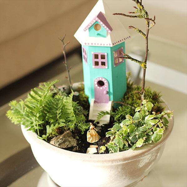 Growing indoor gardens tips